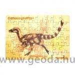 Compsognathus puzzle (48 db)