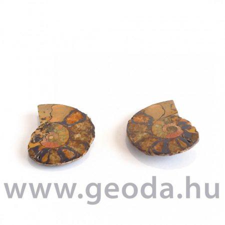 Ammonitesz (félbevágott) 0001
