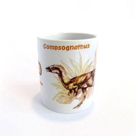 Compsognathus bögre