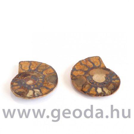 Ammonitesz (félbevágott) 0002